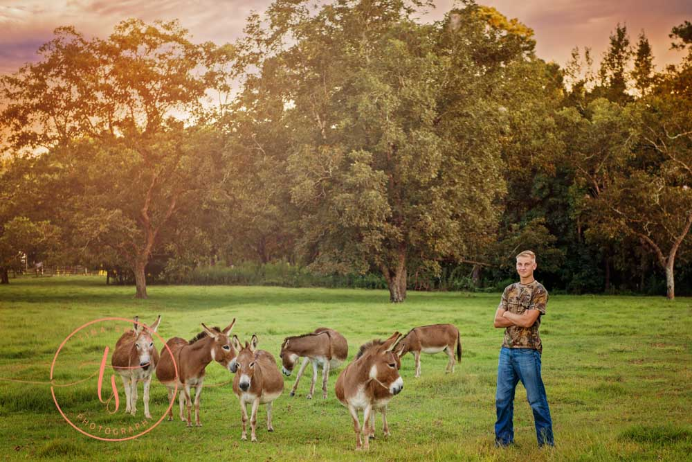 senior boy posing with donkeys