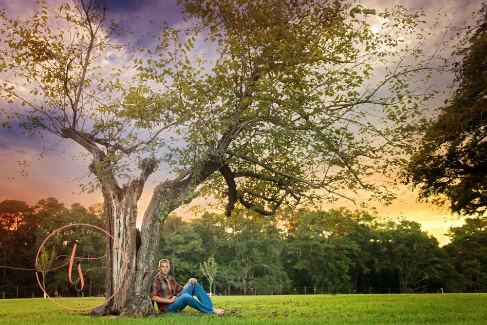senior boy sitting under a big oak tree at sunset
